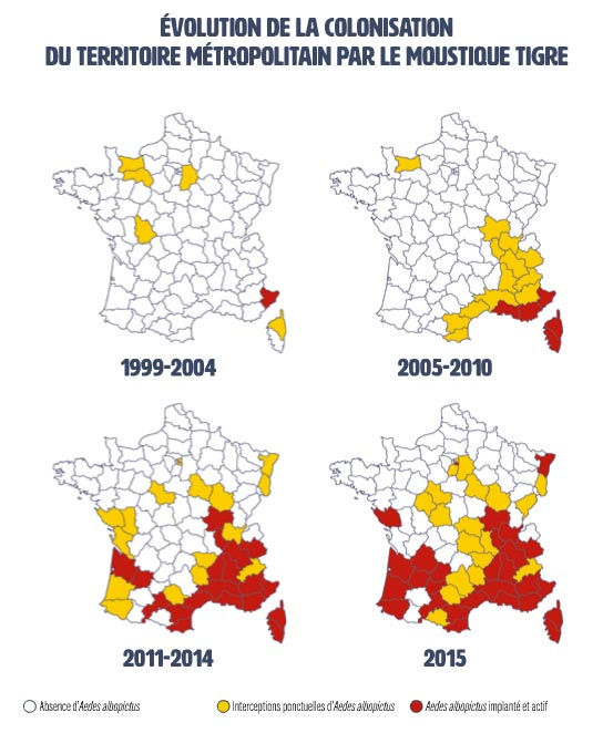 Évolution de l'implantation du moustique tigre en France. Source : EID