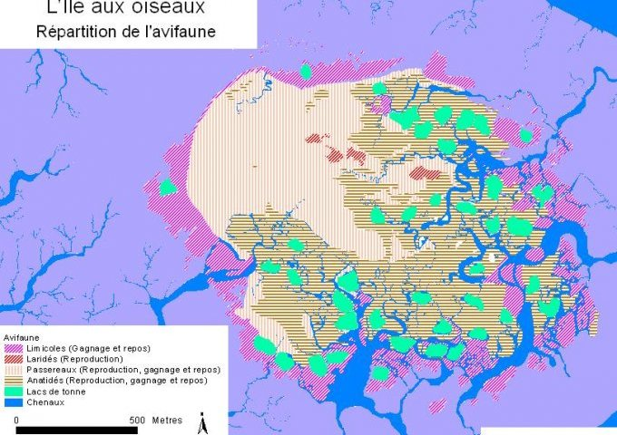 Répartition de l'avifaune